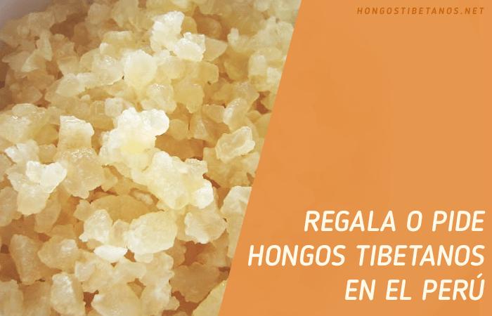 Tíbicos, Kéfir o Búlgaros en Perú