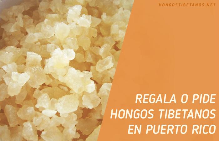 Búlgaros u Hongos Chinos en Puerto Rico