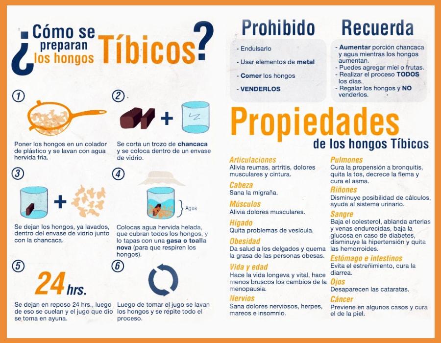 Infografía de Preparación de los Tíbicos, Kéfir de Agua o Búlgaros